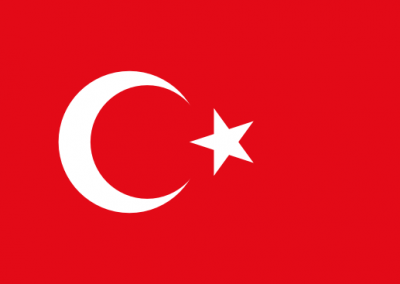 Caregiver Contribution SCHFI – Turkish