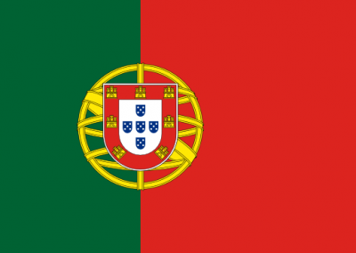 Patient Version SC-CHDI – Portuguese