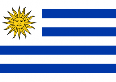 Patient Version SCHFI – Uruguay v6.2