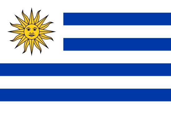 Patient Version SCHFI – Uruguay v6.2