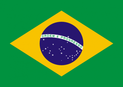 Caregiver Contribution SCHFI – Brazil