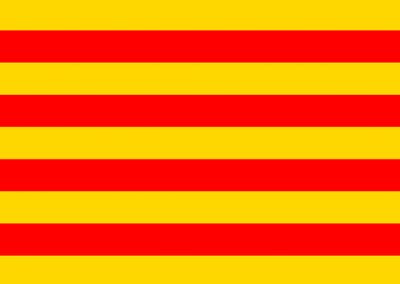 Patient Version SC-CHDI – Catalan