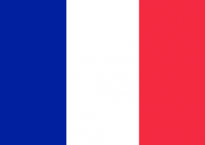 Caregiver Contribution Self Efficacy Scale – French