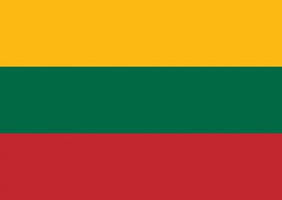 Patient Version SC-CHDI – Lithuanian
