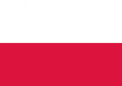 Patient Version SC-HI – Polish