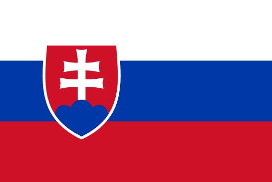 Patient Version SCHFI – Slovak v6.2