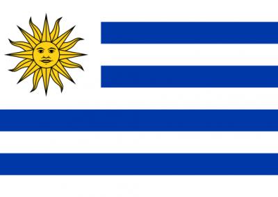 Patient Version SC-CHDI – Uruguay