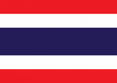Caregiver Contribution CC-SCHFI – Thai